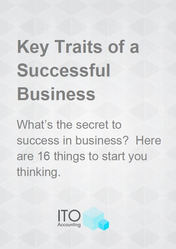Key Traits of a Successful Business cover